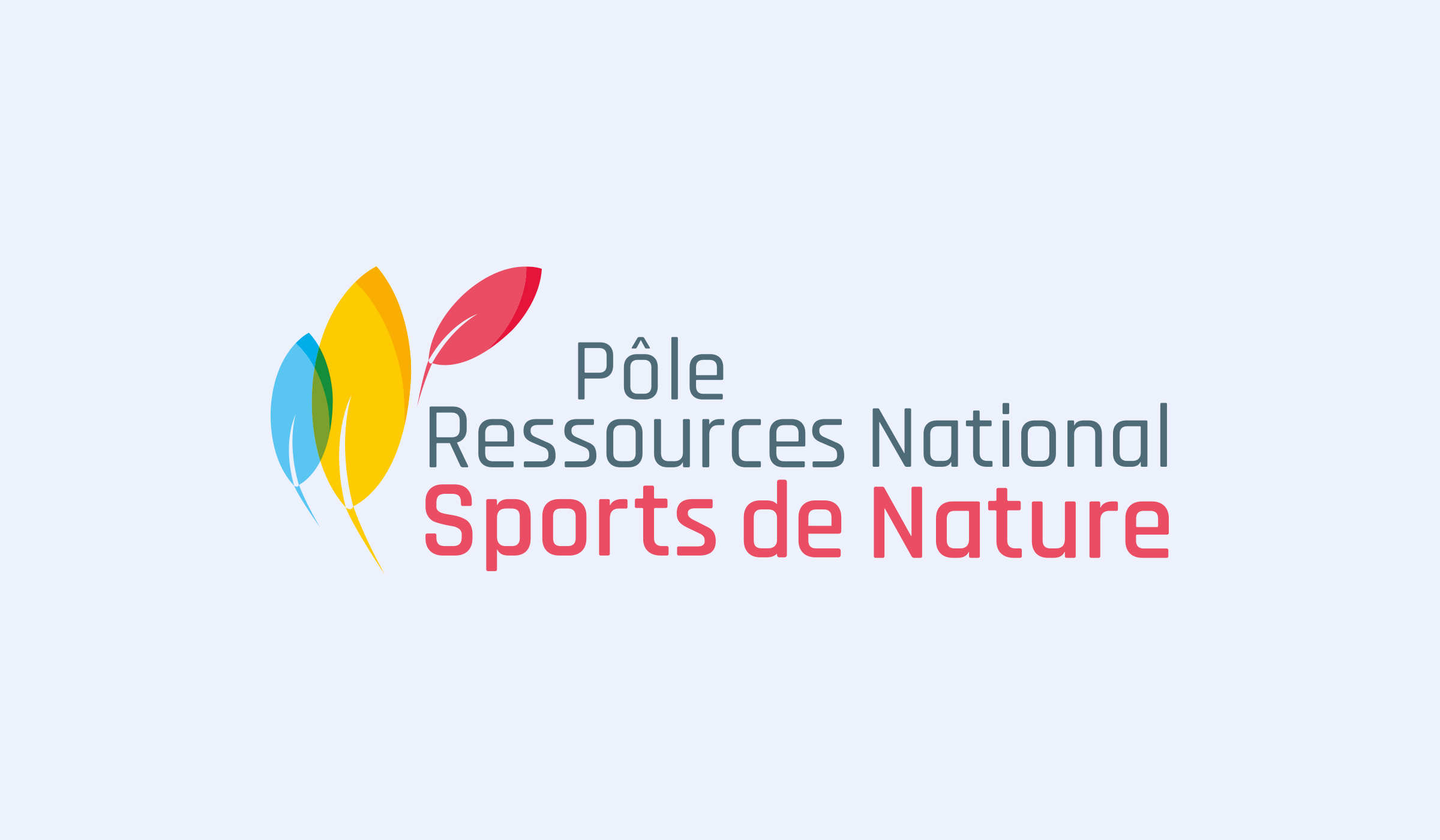 Réalisation du logo PRNSN par l'agence de communication