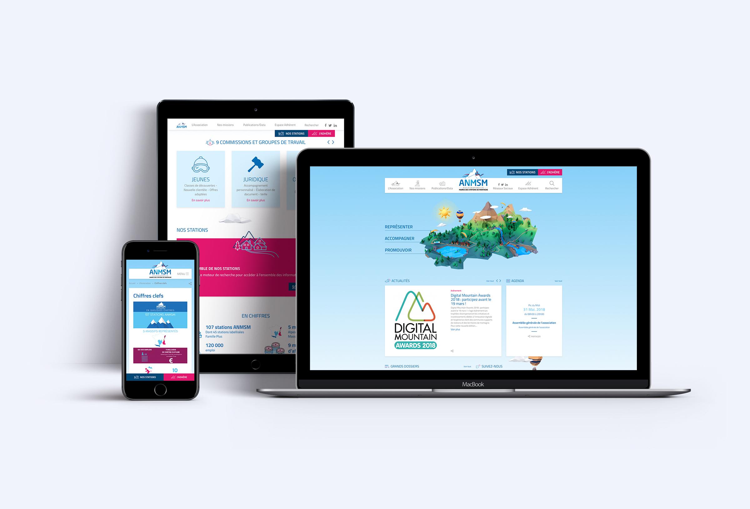 Conception et production Site web ANMSM