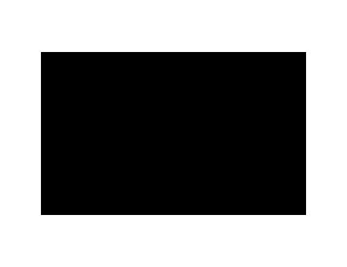logo 3iS noir et blanc