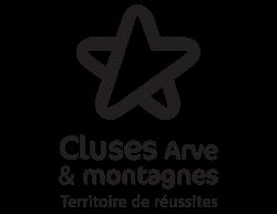 Logo 2CCAM